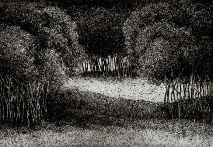 Šuma II